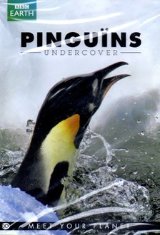 BBC Earth - Pinguins Undercover